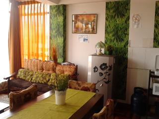 Beautiful  Apartment In Cusco - Peru vacation rentals