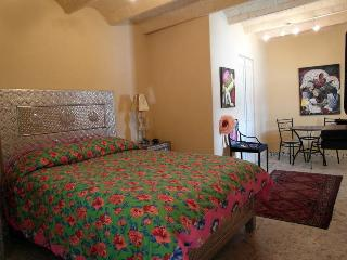 Casa's Artista's: the Diego Studio DOWNTOWN!!! - San Miguel de Allende vacation rentals