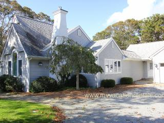 FIEDJ - Walk to Town, Central Air, Wifi - Edgartown vacation rentals
