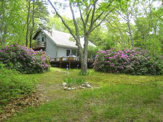 NETNA - Vineyard Haven vacation rentals