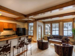 A Mountain View (1 bedroom, 1 bathroom) - Telluride vacation rentals