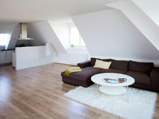 Vacation Apartment in Flensburg - 1184 sqft, luxurious, high-quality, unique (# 5092) - Schleswig-Holstein vacation rentals