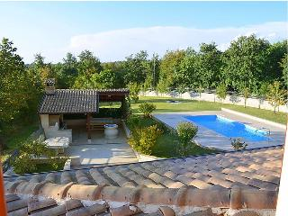 Large luxury villa Kate with private swimming pool - Sveti Petar u Sumi vacation rentals