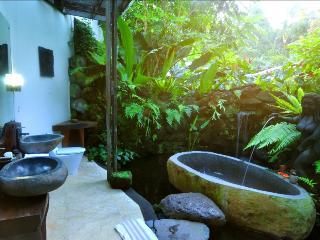 Deluxe Room Ricefield view - Ubud vacation rentals
