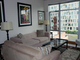 Top floor, cityscape views in the Pearl District - Portland Metro vacation rentals