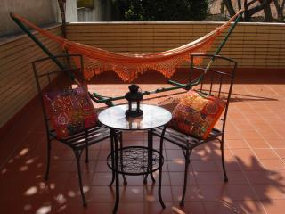 Central apartment, great terrace - Porto vacation rentals