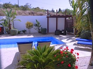 CY204 4 Bed villa in Protaras with pool & wifi - Protaras vacation rentals