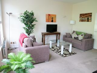 SPECIAL Beautiful 2 bed apartment at St Pauls WIFI - London vacation rentals
