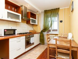 Comfortable and modern apartment! - Russia vacation rentals
