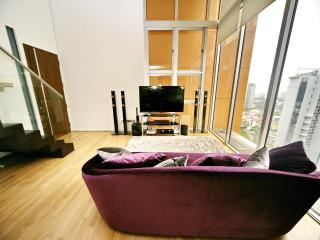 3Bedroom Loft Newton Orchard Singapore - Singapore vacation rentals