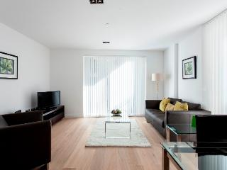 Luxurious Studio Apartment in Shoreditch - London vacation rentals