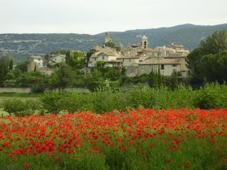 Le Vénoc  fresh ground floor apartment in Provence - Lourmarin vacation rentals
