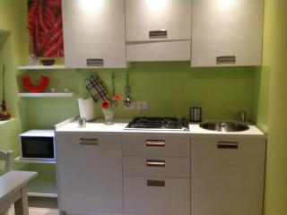 New Green Apt Nearby Main Station - Florence vacation rentals