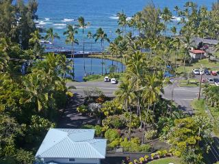 LM Openings Special - Oceanfront - Hilo District vacation rentals