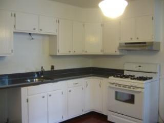 Large 1-2 Bed. near Moody St., Brandeis, Bentley - Waltham vacation rentals