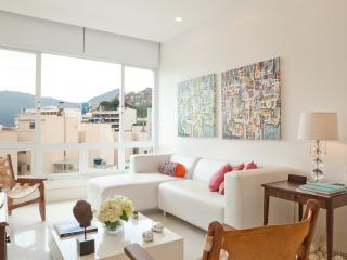 Bright 2 Bedroom in Ipanema - Buenos Aires vacation rentals