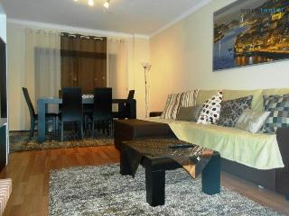 Thymus Apartment - Vila Nova de Gaia vacation rentals