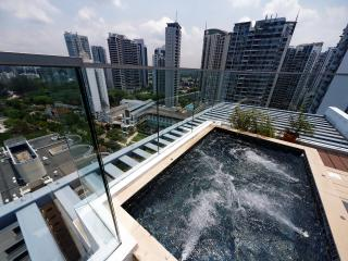 2 Bedroom Penthouse Next to Newton Circus MRT - Singapore vacation rentals