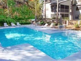 Ocean Breeze 99 - Hilton Head vacation rentals