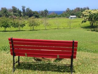 New Ocean View Suite with Stream on Fruit Orchard - Pepeekeo vacation rentals