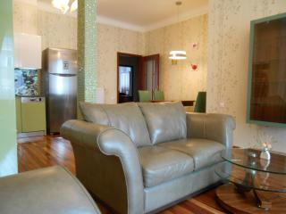 Luxury apartment in the heart of the city - Budapest vacation rentals