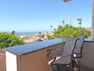 The Whale 647 Law Street  San Diego - Pacific Beach vacation rentals