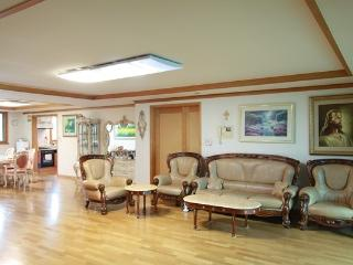 Huge Property with Garden View in HOT PLACE - South Korea vacation rentals