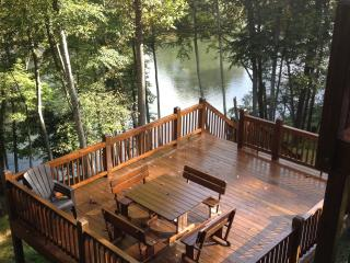 Cabin on the New River! Fish, Canoe, Hike, Enjoy - Piney Creek vacation rentals