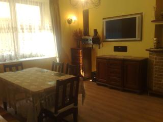Flat 200 meters from Wawel castle - Krakow vacation rentals