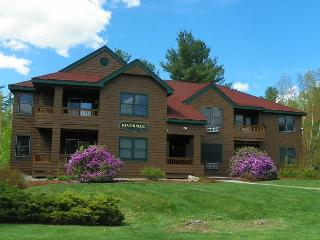 2 Bedroom Unit at Deer Park with Great Recreation Center (MAR142M) - Lincoln vacation rentals