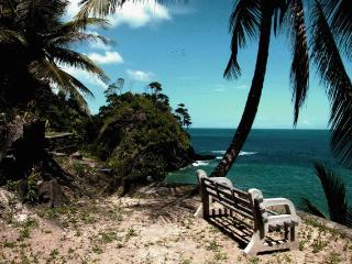 Serenity the Cliff House - Trinidad vacation rentals