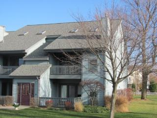 Cannery Row #1 - South Haven vacation rentals
