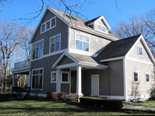 Eaton Cottage - South Haven vacation rentals