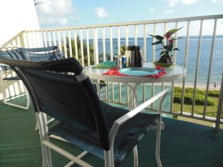 New Inside, Ocean View, Secluded Beach...Paradise - North Shore vacation rentals