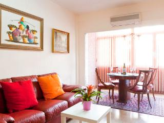 Plaza Espanya Nice Apartment - Catalonia vacation rentals