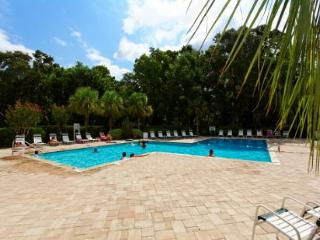 Evian 125 - Palmetto Dunes vacation rentals