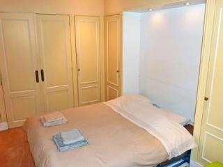 Luxurious city-centre apartment with garden - Paris vacation rentals