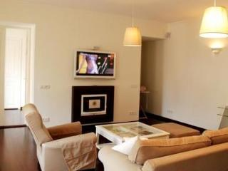 Fantastic two bedroom apartment on Nevsky Prospect - Russia vacation rentals