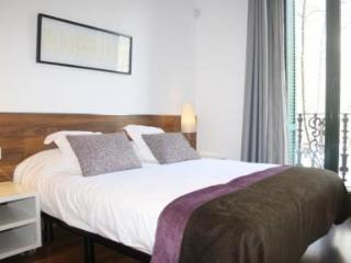 Apartment in the Passeig de Gracia - Paris vacation rentals