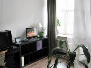 Apartment On Nevskiy in Center of Saint Petersburg - Russia vacation rentals