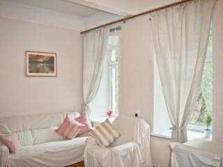 BOGO Apartment in the Heart of Moscow - Central Russia vacation rentals