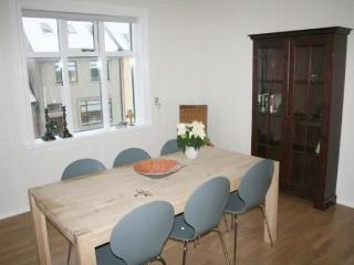 Bright and Spacious Apartment in a Central Location - Iceland vacation rentals