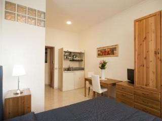 Close to the Coliseum 3 Bedrooms and 3 bathrooms - Lazio vacation rentals