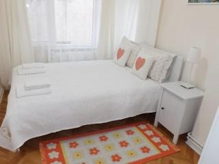 Central Apartment Bosphorus 2 - Istanbul vacation rentals