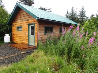 Sprucewood Cabin - Homer vacation rentals