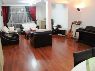 Embassy And Tunali area, Cosy Flat - Central Anatolia vacation rentals