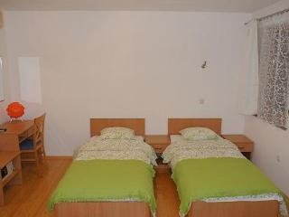 STUDIO APARTMENTS HOME IN CITY*** - Central Croatia vacation rentals