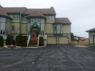 Fully Updated Luxury Lake Michigan Condo - Manistee vacation rentals