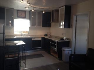 Downtown Fort Myers newly renovated 1 BR 1st floor - Fort Myers vacation rentals