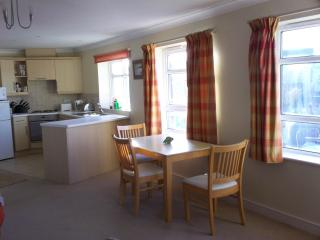 Very Comfortable Newmarket Apartment - Newmarket vacation rentals